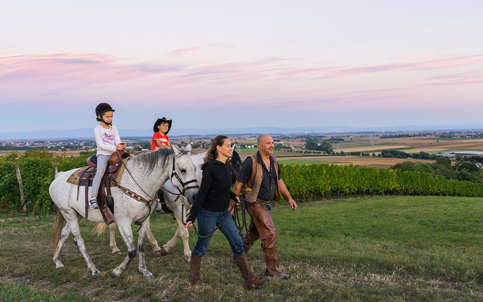 Rando cheval au Kochersberg | Office de Tourisme du Kocherbserg