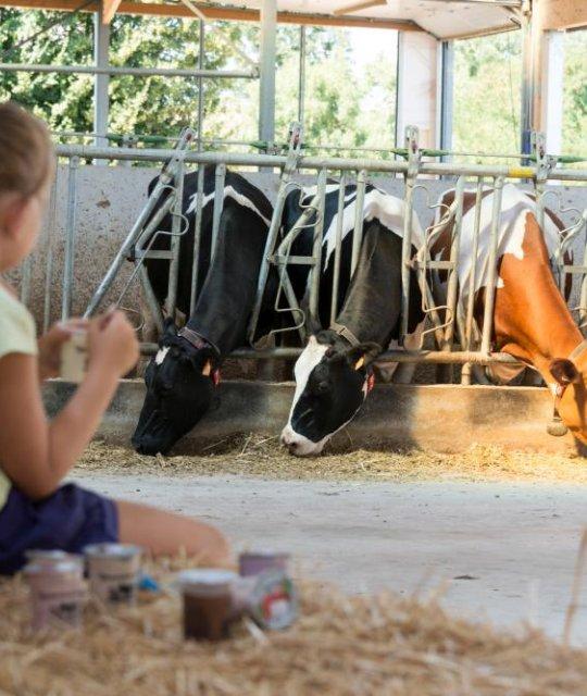 Visite guidée à la ferme