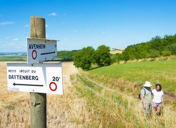 Randonnée pédestre au Kochersberg | Office de Tourisme de Kochersberg
